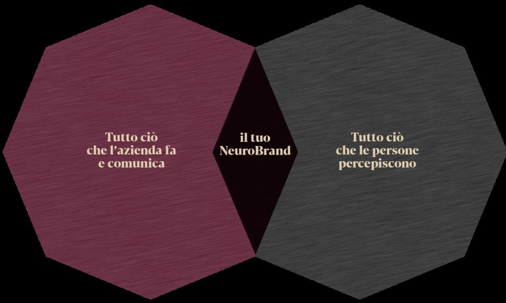 LAMOKA-agenzia-di-Neurobranding-BrandMemorabile-foto-il-tuo-brand-test1